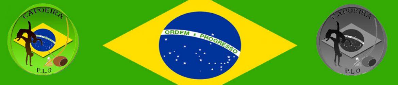 cropped-Bandeau-Capoeira.jpg