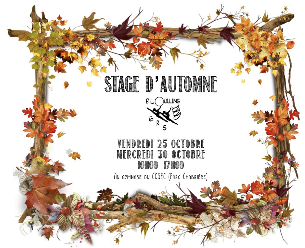 STAGE D AUTOMNE